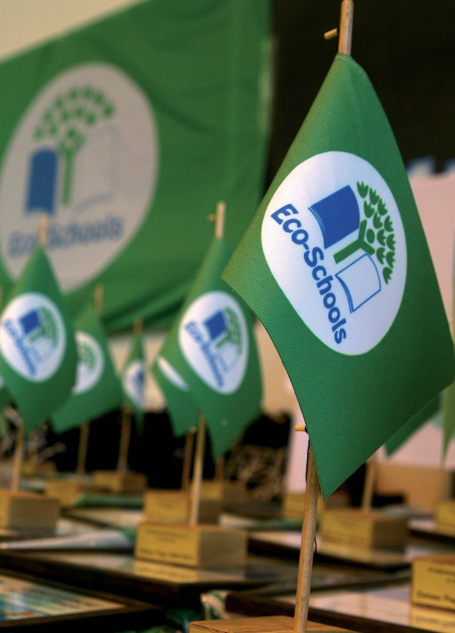 Green Flag_photo